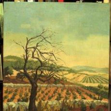 Arte: MIGUEL MARCH PEDROS, OLEO SOBRE TABLA DE GRANDES DIMENSIONES. FIRMADO. EXCELENTE CALIDAD.. Lote 221489205