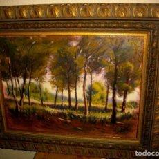 Arte: OLEO FIRMADO V. TAMARIT ( 56 X 45 CTMS ) CON MARCO DE CALIDAD. Lote 223857811