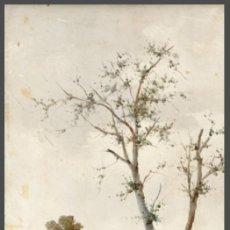 Arte: ANDRES SANDOVAL HUERTAS. SIGLO XIX. RIO EN OTOÑO. OLEO SOBRE TABLA 40X20,5.. Lote 223944642