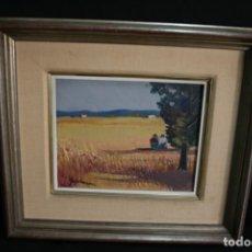 Arte: SADURNÍ (1927-2014) BONITO OLEO SOBRE TELA, FIRMADO. Y MUY BIEN ENMARCADO.. Lote 228392540