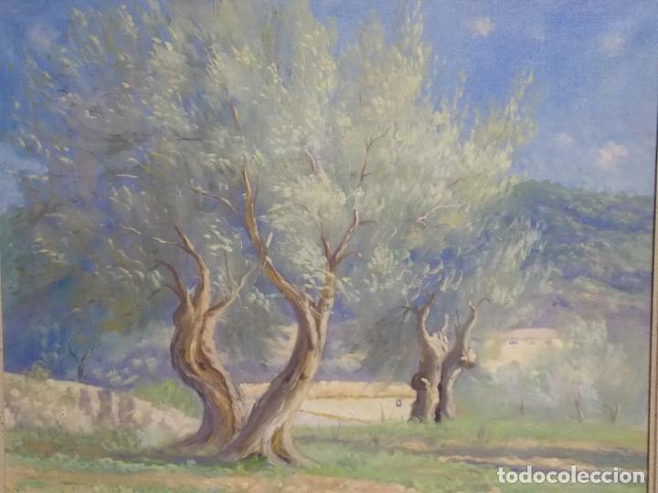 JOSEP COLL BARDOLET (Arte - Pintura - Pintura al Óleo Antigua sin fecha definida)