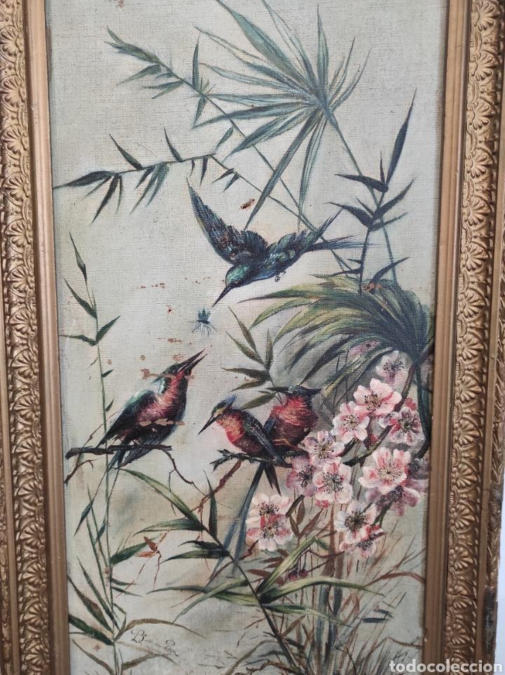 Arte: Escuela española siglo XIX, oleo sobre lienzo. Aves y plantas. 70x41cm Firmado. - Foto 2 - 231640870