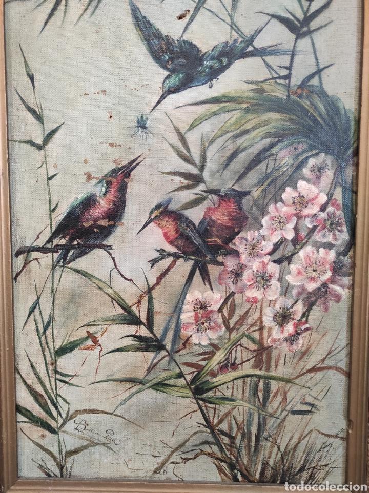 Arte: Escuela española siglo XIX, oleo sobre lienzo. Aves y plantas. 70x41cm Firmado. - Foto 3 - 231640870
