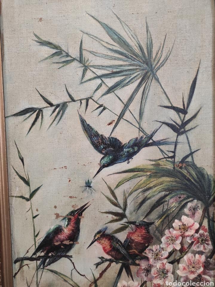 Arte: Escuela española siglo XIX, oleo sobre lienzo. Aves y plantas. 70x41cm Firmado. - Foto 4 - 231640870