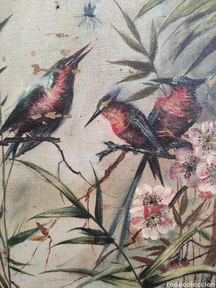 Arte: Escuela española siglo XIX, oleo sobre lienzo. Aves y plantas. 70x41cm Firmado. - Foto 5 - 231640870