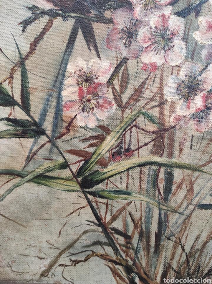 Arte: Escuela española siglo XIX, oleo sobre lienzo. Aves y plantas. 70x41cm Firmado. - Foto 6 - 231640870