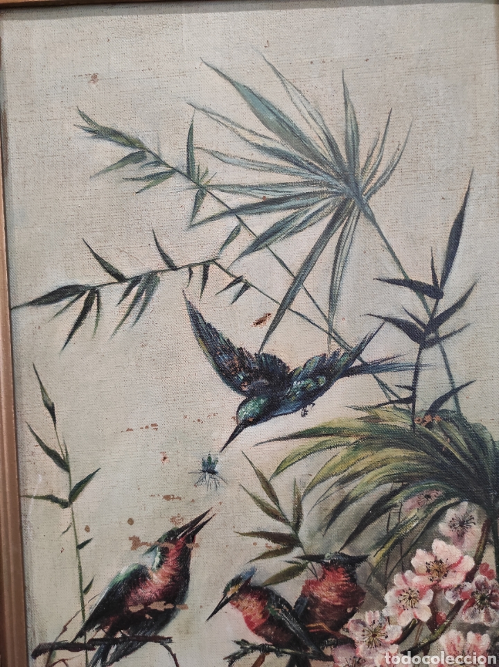 Arte: Escuela española siglo XIX, oleo sobre lienzo. Aves y plantas. 70x41cm Firmado. - Foto 8 - 231640870