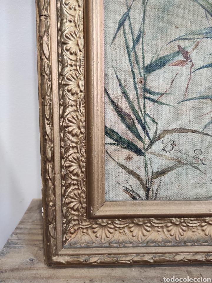 Arte: Escuela española siglo XIX, oleo sobre lienzo. Aves y plantas. 70x41cm Firmado. - Foto 10 - 231640870