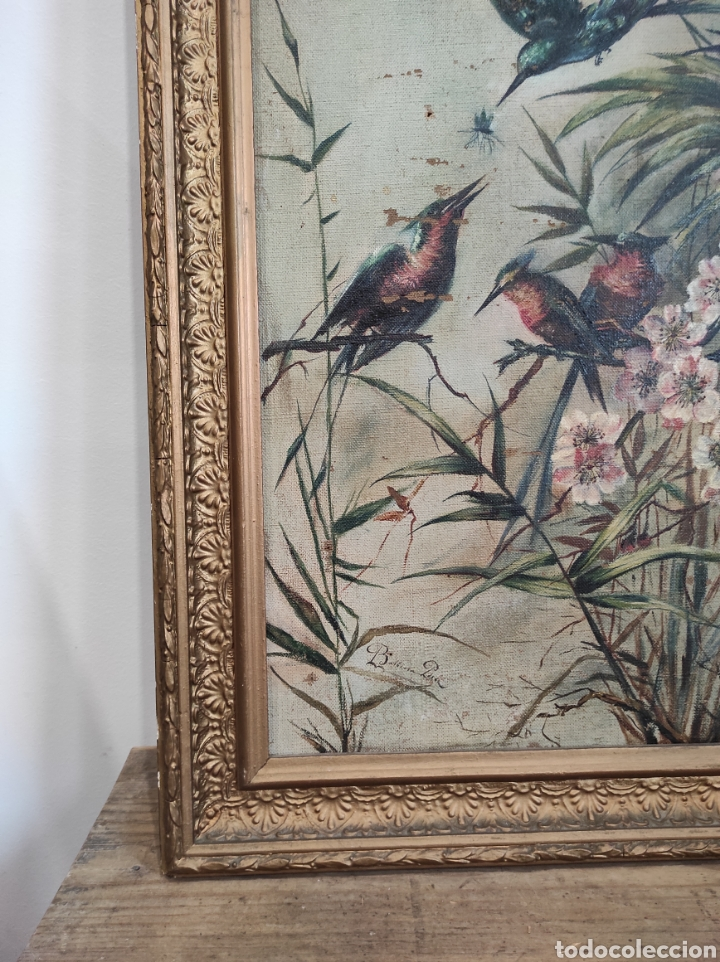 Arte: Escuela española siglo XIX, oleo sobre lienzo. Aves y plantas. 70x41cm Firmado. - Foto 11 - 231640870