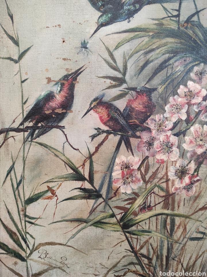 Arte: Escuela española siglo XIX, oleo sobre lienzo. Aves y plantas. 70x41cm Firmado. - Foto 12 - 231640870
