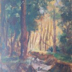 Arte: OLEO SOBRE MADERA. PAISAJE CON RIACHUELO. DATADO DETRAS 1901. SIN FIRMAR.. Lote 233961250