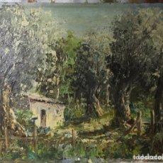 Arte: OLEO SOBRE TABLA FIRMADO HEVIA 46X38CM NO TIENE MARCO. Lote 237348600