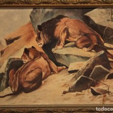 Arte: ECOLE FRANÇAISE DU DÉBUT DU XXE SIÈCLE - LIONS À L'AFFÛT 54X43CM(ENMARCADO) OLEO LIENZO. Lote 238455525