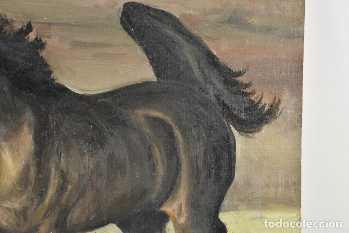 Arte: MARAVILLOSO RETRATO OLEO MAGNIFICO SEMENTAL CABALLO AÑO 1930 43X 49 cm - Foto 2 - 240951100