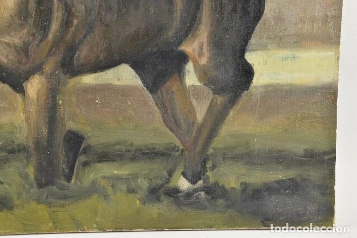 Arte: MARAVILLOSO RETRATO OLEO MAGNIFICO SEMENTAL CABALLO AÑO 1930 43X 49 cm - Foto 3 - 240951100