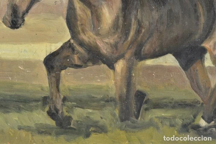 Arte: MARAVILLOSO RETRATO OLEO MAGNIFICO SEMENTAL CABALLO AÑO 1930 43X 49 cm - Foto 6 - 240951100