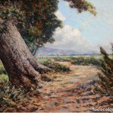 Arte: FIRMADO CASALS. OLEO SOBRE TABLEX FECHADO DEL AÑO 1956. PAISAJE. 46 X 54 CM.. Lote 241143180