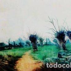 Arte: RICARDO MANZANET 1852 - 1931 PAISAJE CAMPESTRE. Lote 243079140