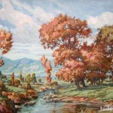 Arte: DIONISIO NADAL LLORENS (LLEIDA, 1909 - VALLDOREIX, 1996) OLEO TELA. CAMINO DE ESPOT (LÉRIDA). Lote 243536925