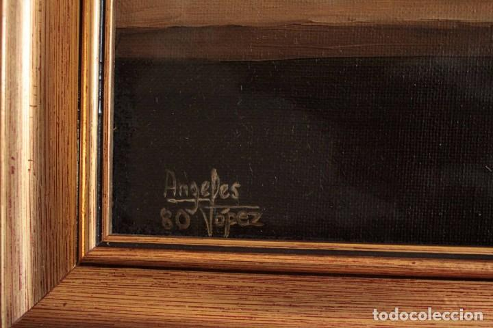 Arte: Bodegón pintado al oleo sobre lienzo. Firmado. Enmarcado 42x35cm - Foto 9 - 243578550