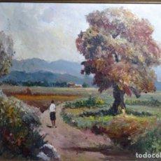 Arte: ÓLEO ESCUELA CATALANA FIRMADO F. JULIA.BUEN TRAZO Y BIEN ENMARCADO.. Lote 243678085