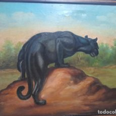 Arte: OLEO SOBRE LIENZO SEGUNDA MITAD SIGLO XX PANTERA EN LIBERTAD. Lote 244740025