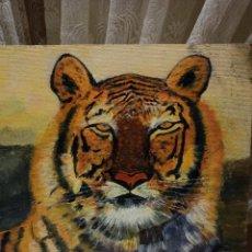 Arte: PINTURA OLEO TIGRE. Lote 246325340