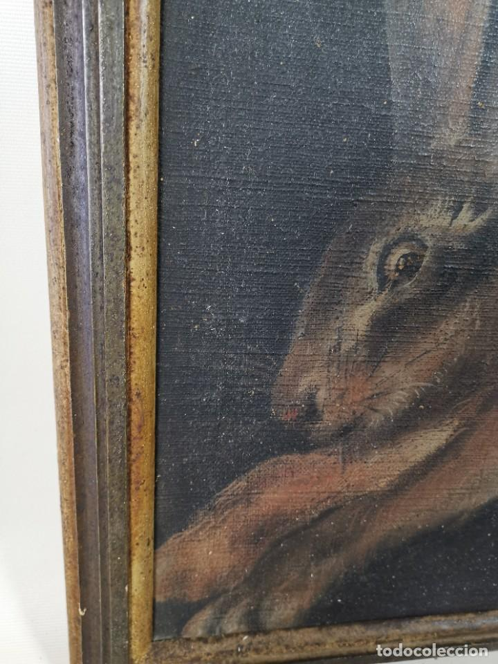 Arte: OLEO NATURALEZA MUERTA-BODEGON-CAZA-PESCA -SIGLO XVIII-CATALUÑA-- --REF-MO - Foto 15 - 248018070