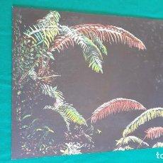 Arte: ÓLEO SOBRE TABLILLA CUADRO PALMERA. Lote 248362620