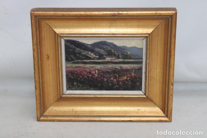 FIRMADO L. TETXAS. OLEO SOBRE TABLA FECHADO DEL AÑO 1965. PAISAJE FLORECIDO (Arte - Pintura - Pintura al Óleo Contemporánea )