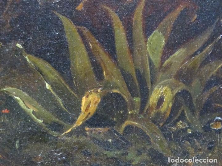 Arte: GRAN ÓLEO SOBRE TELA DEL AÑO 1886 FIRMADO MORU. ESCUELA CATALANA DE GRAN CALIDAD. - Foto 26 - 252703140