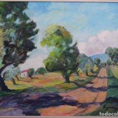 Arte: ÓLEO SOBRE TELA DE JOSEP SUGRANYES I LLORACH. CAMP DE TARRAGONA.. Lote 255646905