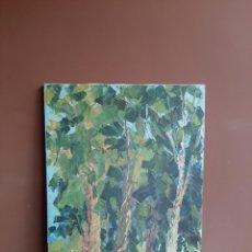 Arte: NATURALEZA ( AÑOS 20- 30 ) ANÓNIMA ( LIENZO OLEO ORIGINAL). Lote 257361555