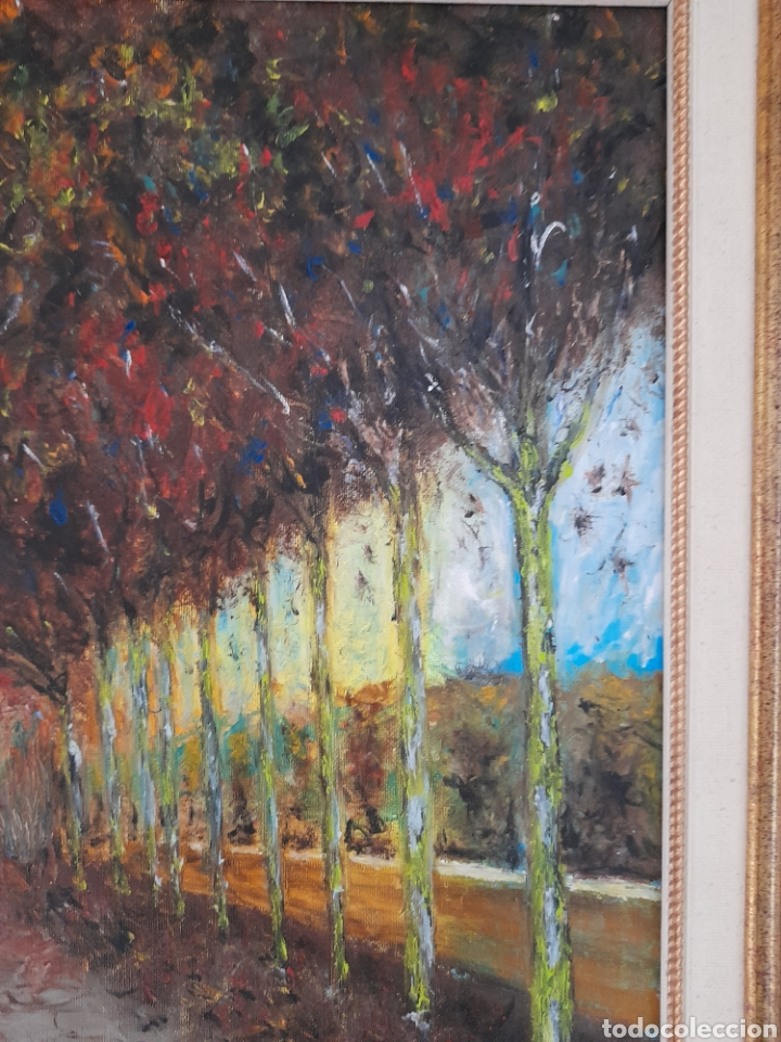 Arte: Oleo sobre lienzo firmado J.Aroca ,1998 - Foto 3 - 260829610