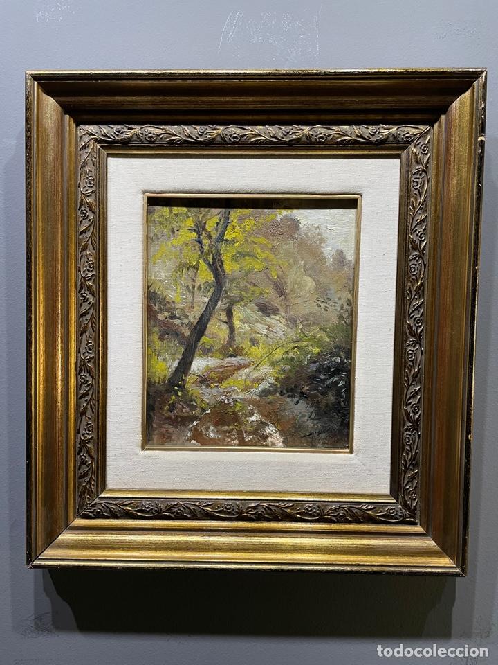 JORDI ARENAS I CLAVELL - (MATARÓ 1920-1998)PINTOR ESCULTOR (Arte - Pintura - Pintura al Óleo Moderna siglo XIX)