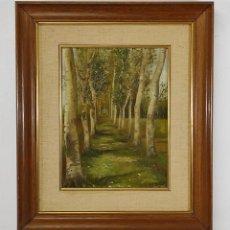 Arte: J. BERGA BOADA (OLOT 1872-SANT FELIU GUIXOLS 1923) - ÓLEO SOBRE TELA - PAISAJE. Lote 262686055