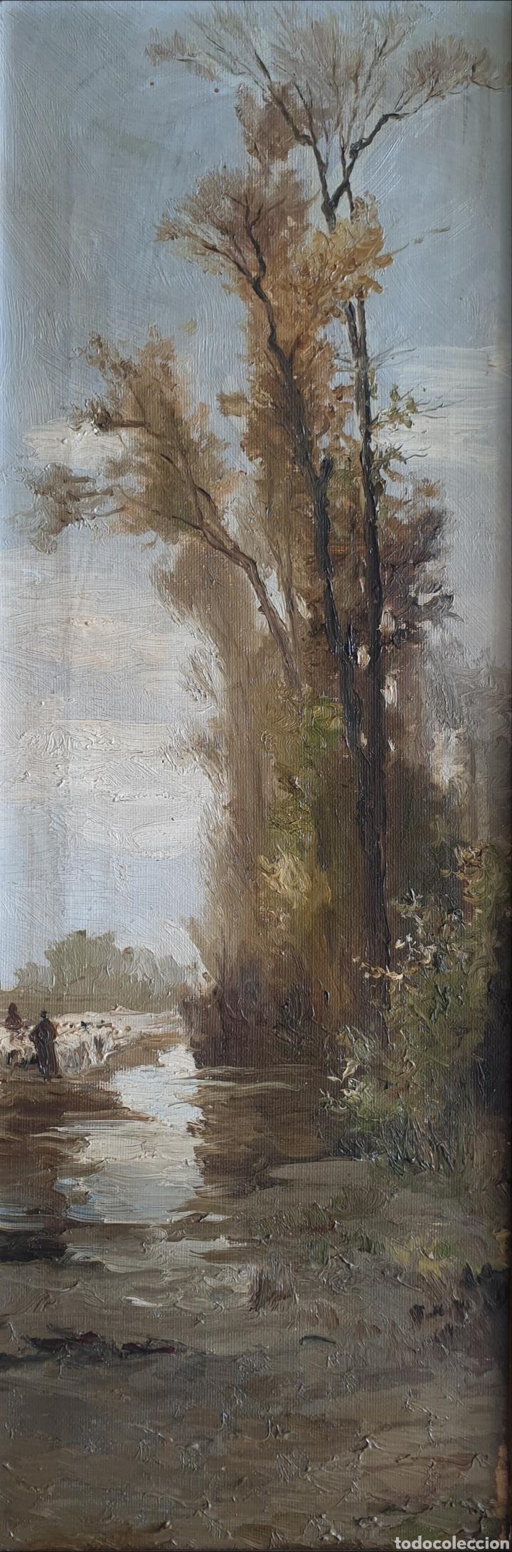 Arte: Escuela Española (XIX) - Paisaje Fluvial con Pastor i Rebaño.Oleo/Tela.Anónimo. - Foto 2 - 262957535
