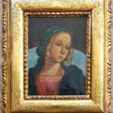 Arte: INTERESANTE PINTURA ITALIANA SEGUIDOR DOMENICO GHIRLANDAIO, MADONNA COLECCIÓN PRIVADA?, CALIDAD. Lote 264809619