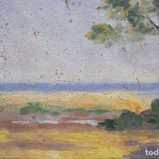 Arte: DOLORES (LOLITA) CALLOL CHEVALIER. ESTUDIO DE PLAYA. OLEO SOBRE CARTÓN. 12 X 20 CM. Lote 265681449