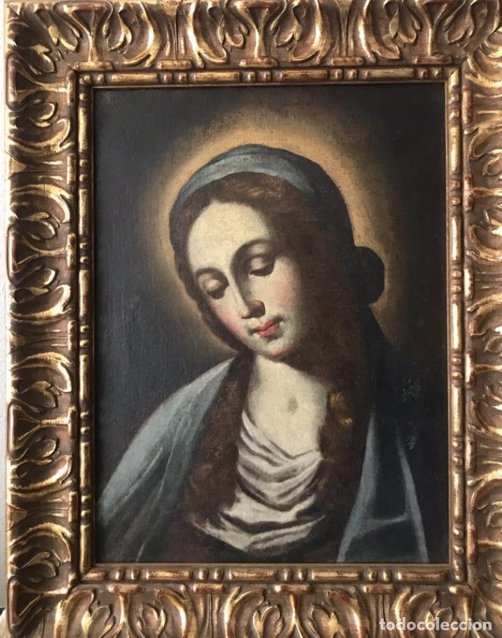 MADONNA (Arte - Pintura - Pintura al Óleo Antigua siglo XVIII)