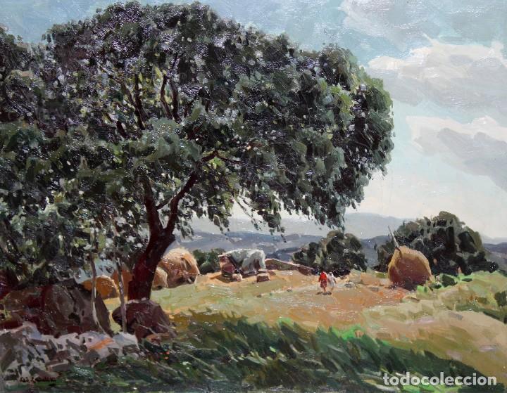 JOSEP Mª VILA CAÑELLAS (1913 - 2001) OLEO SOBRE TELA. VISTA DE UN PAISAJE RURAL (Arte - Pintura - Pintura al Óleo Contemporánea )