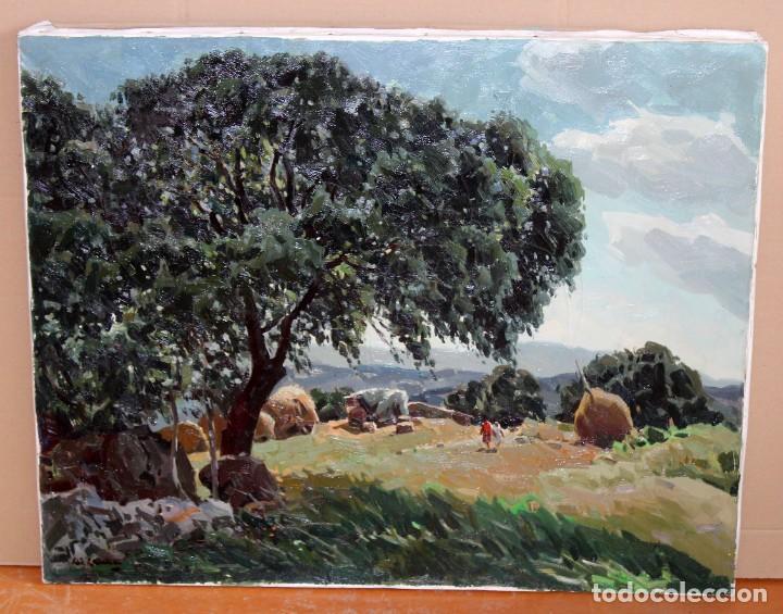 Arte: JOSEP Mª VILA CAÑELLAS (1913 - 2001) OLEO SOBRE TELA. VISTA DE UN PAISAJE RURAL - Foto 2 - 273267403