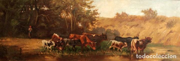 Arte: Escuela francesa o belga del siglo XIX, vacas en el rio. oleo sobre lienzo. Firma ilegible. - Foto 2 - 274912718