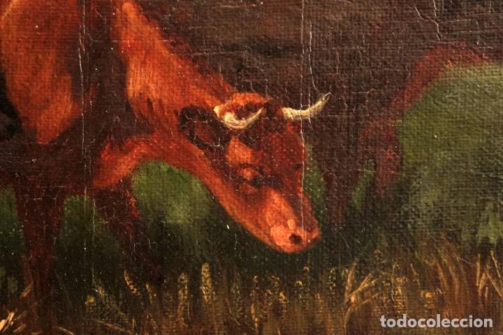 Arte: Escuela francesa o belga del siglo XIX, vacas en el rio. oleo sobre lienzo. Firma ilegible. - Foto 15 - 274912718