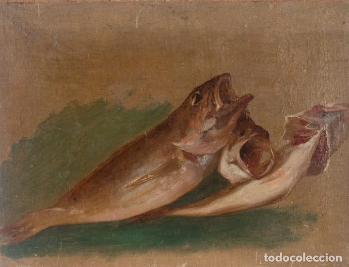 ÓLEO SOBRE LIENZO PEGADO A TÁBLEX PESCADOS SIGLO XIX (Arte - Pintura - Pintura al Óleo Moderna siglo XIX)