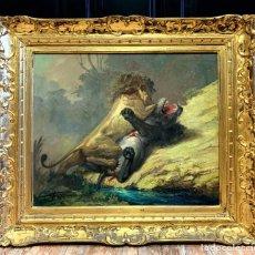 Arte: LUCIENNE FILIPPI : LE COMBAT DES FAUVES HUILE SUR TOILE VERS 1950. Lote 278940493