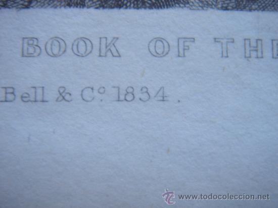 Arte: GRABADO RELIGIOSO, REY JOSÍAS, BELL, LONDRES, 1834, DATADO EN PLANCHA, - Foto 10 - 37385219