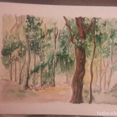 Arte: ACUARELA DE JAVIER ESCUDERO. Lote 62095152