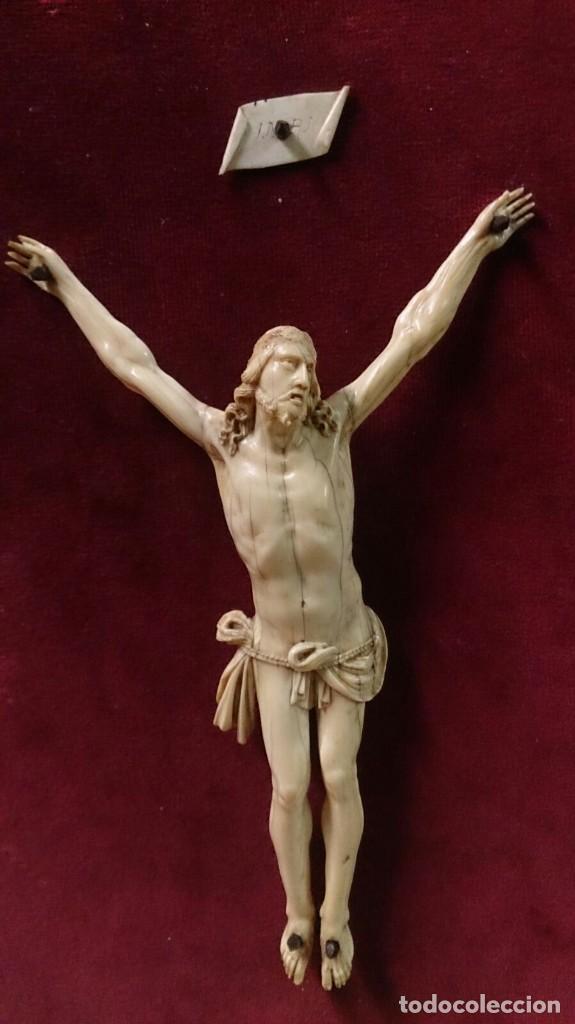 CRISTO DE MARFIL SOBRE TERCIOPELO ROJO, SIGLO XIX (Arte - Arte Religioso - Escultura)