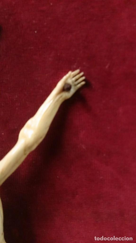 Arte: Cristo de marfil sobre terciopelo rojo, siglo XIX - Foto 9 - 67162397